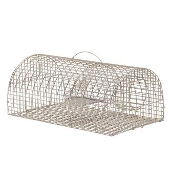 Semi circle rat cage trap