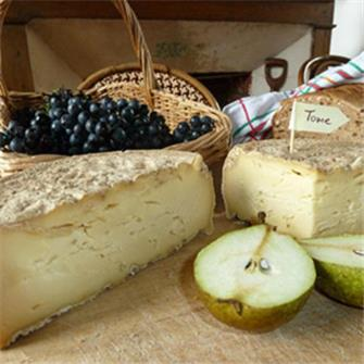 Book -Comment faire du fromage et de la tomme maison (How to make cheese and tomme cheese at home)