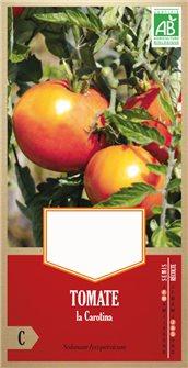 Carotina tomato seeds