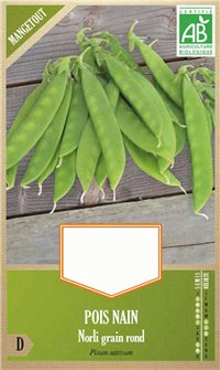 Norli snow pea seeds