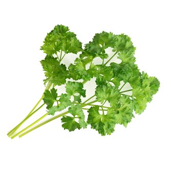 Curried parsley Lingon for vegetable garden Genuine
