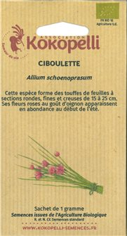 Common chive seeds