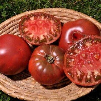 Russian black tomato seeds